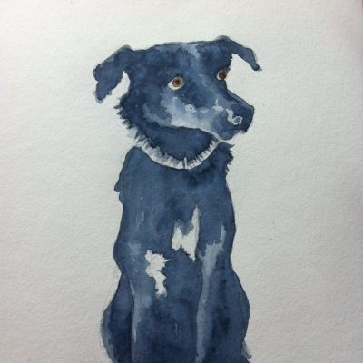 Hund_001